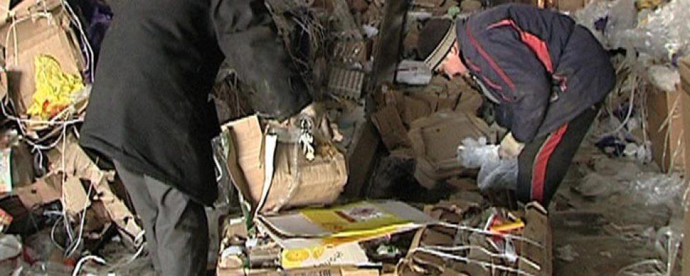 В Воронежской области создадут 8 мусорообрабатывающих кластеров