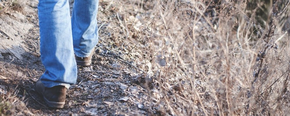 Калачеевец два месяца пешком возвращался домой из цыганского плена