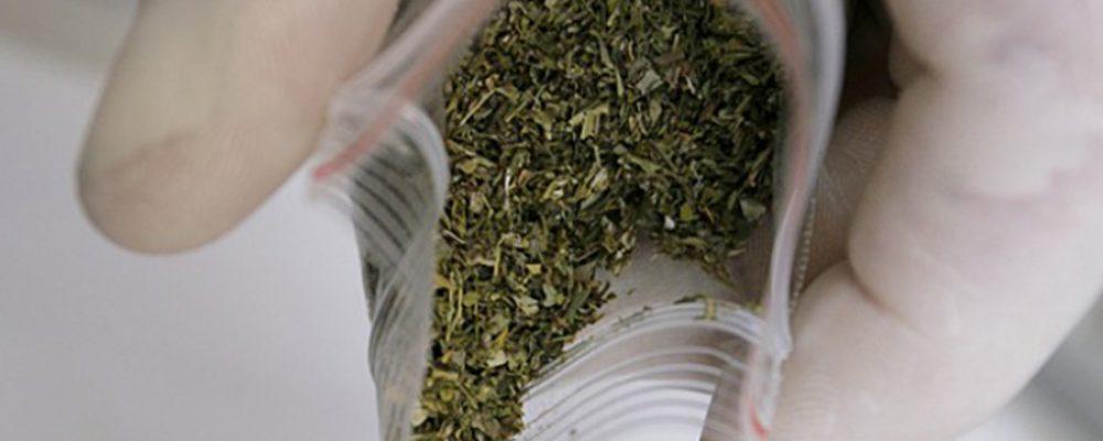Калачеевские полицейские изъяли крупную партию марихуаны