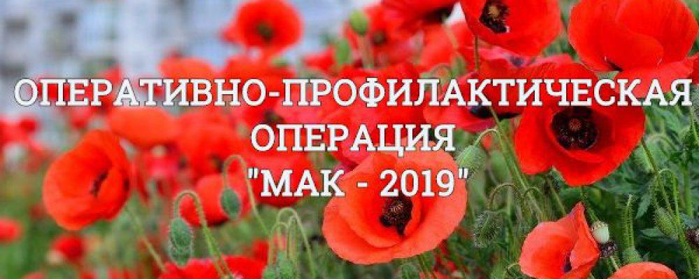 В Калачеевском районе началась антинаркотическая операция «Мак-2019»