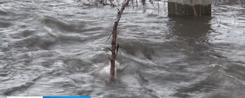 Из-за паводка несколько сёл Калачеевского района оказались отрезаны от цивилизации