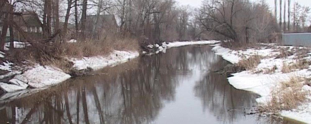 Десятки сёл Воронежской области рискуют оказаться под водой из-за раннего паводка (ВИДЕО)